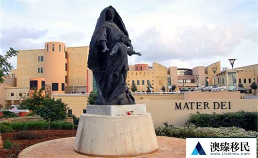 马耳他医疗2.jpg