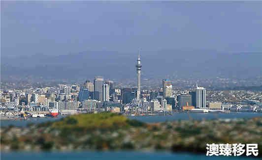 跟随女儿移民新西兰的张阿姨如何适应新西兰生活?