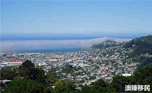 新西兰移民经验谈 (4).jpg