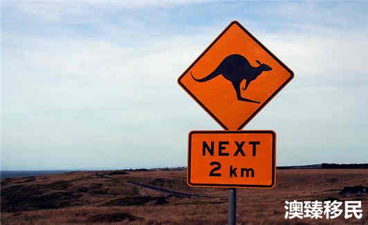 """澳大利亚国家全面介绍,探秘这个""""骑在羊背上的国家""""! (3).jpg"""