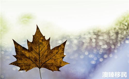 移民加拿大有哪些条件都不知道,还想移民