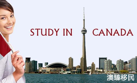 加拿大留学专业选择套路深,详细介绍不了解后悔死1.jpg