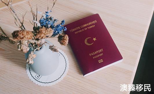 土耳其护照不仅容易去美国,跳板英国也十分方便2.jpg