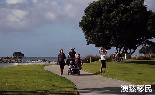 移民新西兰后的生活,既辛酸又甜美但是不后悔1.jpg