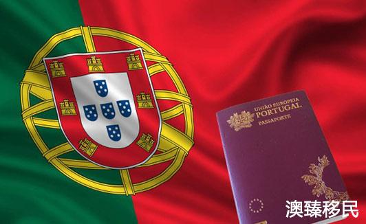 哪些人适合移民葡萄牙,统计数据揭示主要移民来源国真实情况2.jpg