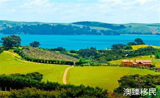 新西兰移民的真实生活,真让人喜出望外1.jpg