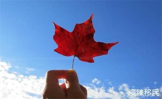 加拿大BC省企业家移民发布新规,无语言移民将成为历史1.jpg