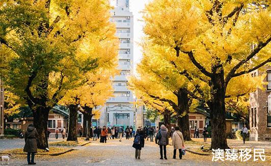 移民日本后,有哪些优质的大学可以选择让孩子就读呢2.jpg