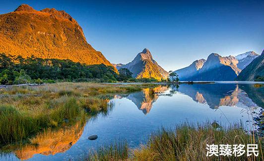 新西兰留学一年费用需要多少?有哪些学校值得选择?